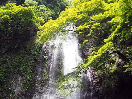 Osaka Minoh Falls
